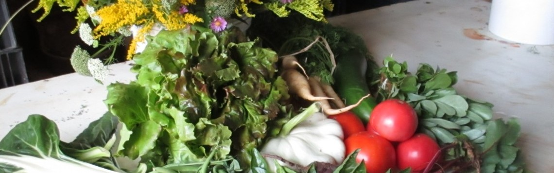 Nos légumes, herbes aromatiques, fruits et fleurs comestibles BIO